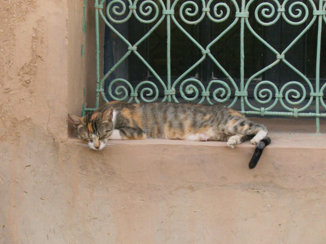 Une fenêtre à Merzouga